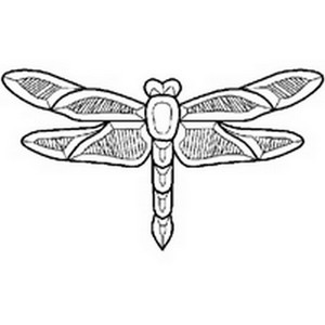 (1196025) DRAGONFLY CLUSTER