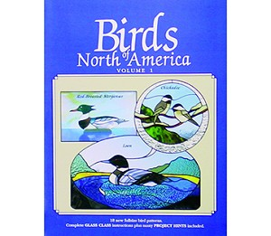 (70632) BIRDS OF NORTH AMERICA